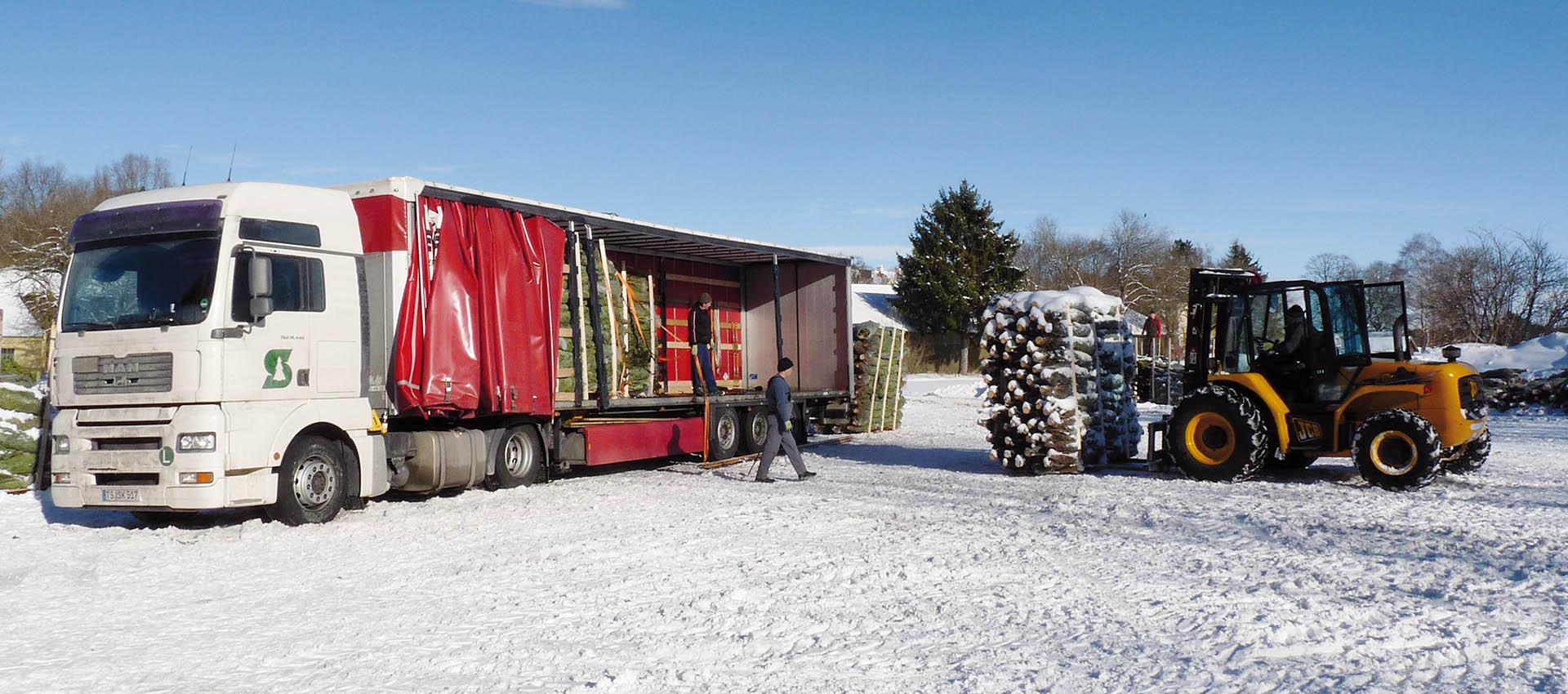 Schauer weihnachtsbaume shop